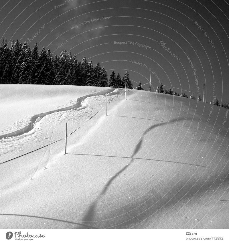Wintertraum Snowboarding Wald Schneelandschaft kalt Tiefschnee Skigebiet schwarz weiß Wintersport Einsamkeit Schlangenlinie Wellen aufwärts Barriere schön Linie