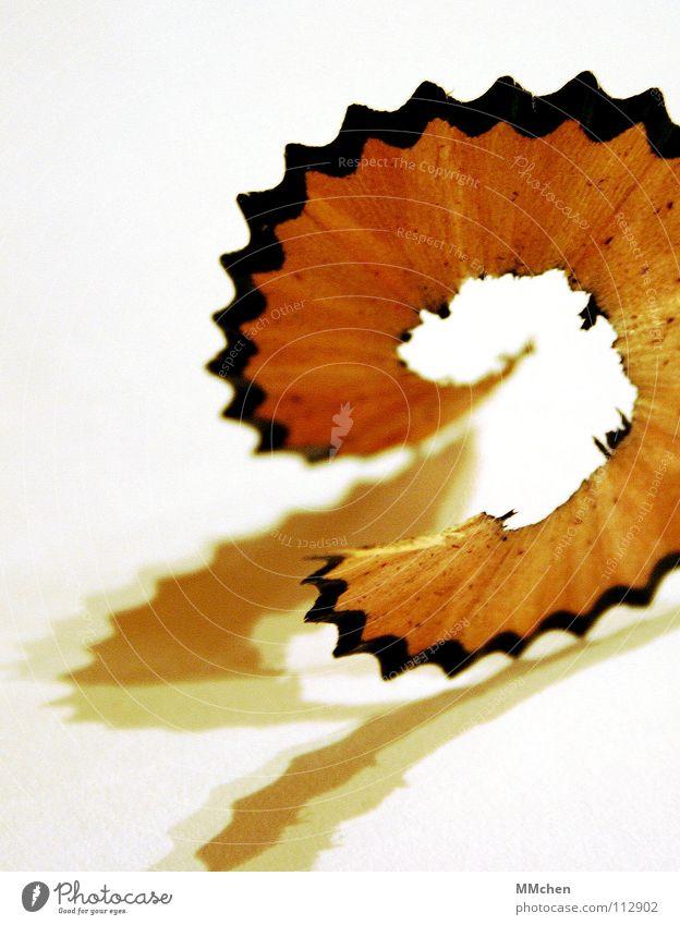 Mach` mich spitz, Schneckchen.... Schreibstift Farbstift Spitze Anspitzer gespitzt Holz Rest Müll Krümel schwarz weiß zerbrechlich Makroaufnahme Nahaufnahme