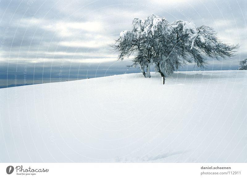 Weihnachtskarte 12 Schwarzwald weiß Tiefschnee wandern Freizeit & Hobby Ferien & Urlaub & Reisen Verhext mystisch abstrakt Hintergrundbild Schneelandschaft
