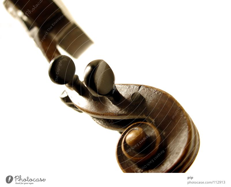 Erste Geige weiß Einsamkeit Musik Kunst Kultur Konzert Steg Schweben Schnecke Bach Musikinstrument Bogen Geige Saite Klassik Zarge