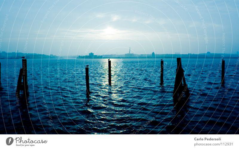 Pfahlsitzer Wasser Himmel Meer blau ruhig Wolken Einsamkeit dunkel kalt Herbst Wellen Horizont Pfosten Schleswig-Holstein maritim Kiel
