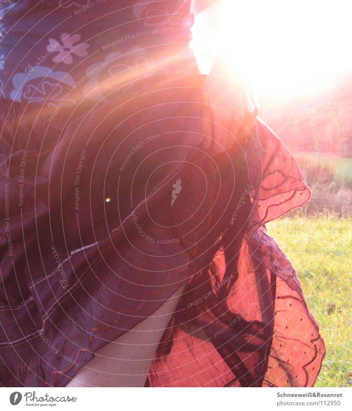 Alte Liebe rostet nicht Natur Sonne Herbst Wiese Tanzen Punkt Blumenmuster