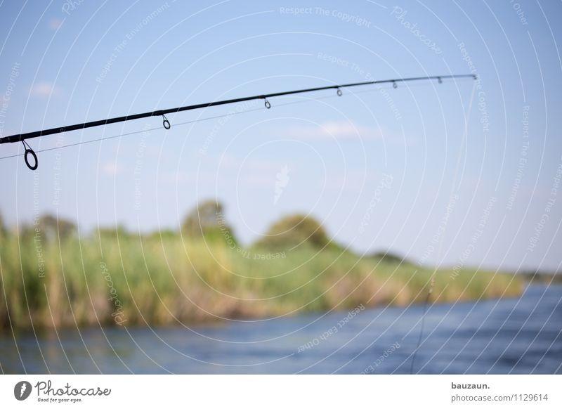 frische. Himmel Natur Ferien & Urlaub & Reisen Wasser Landschaft Umwelt Freizeit & Hobby Tourismus Schönes Wetter Fluss Wolkenloser Himmel Flussufer Afrika