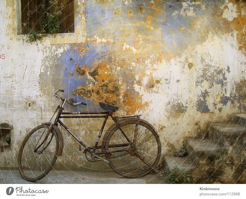 Vintage Bike alt Farbe Wand Fenster Fahrrad Fassade Treppe Rost Indien altehrwürdig verrotten Asien