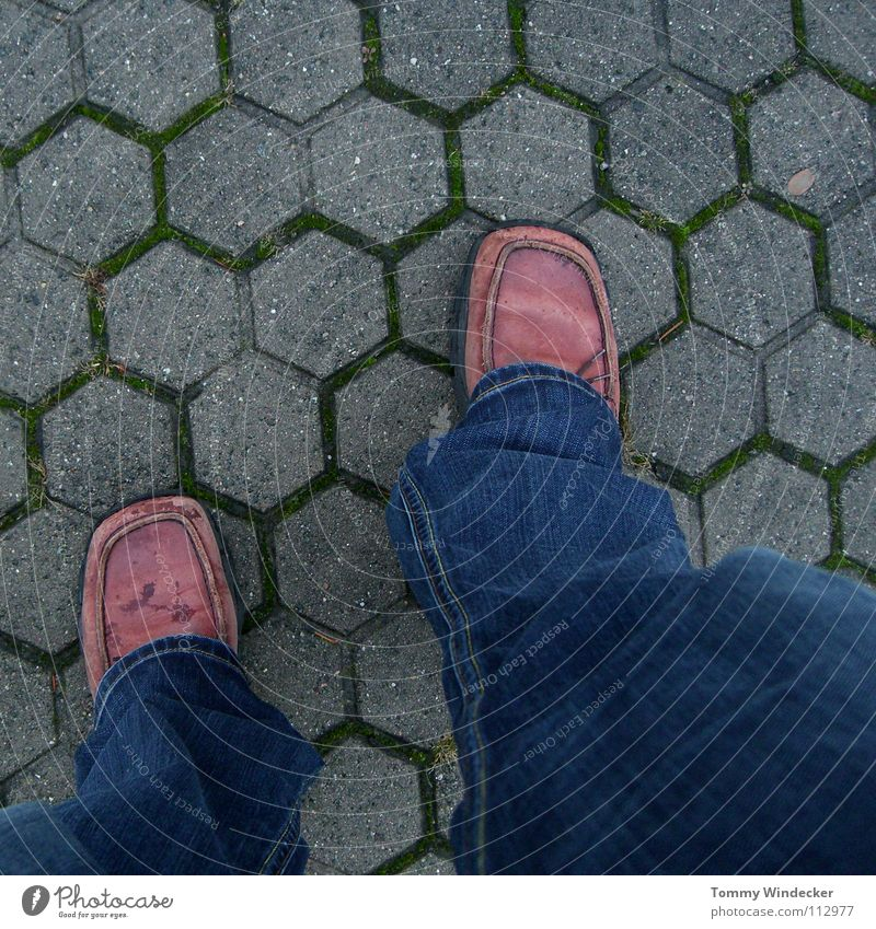 Asphalt catwalk Mann Schuhe Lederschuhe Hose nass kalt gehen Spaziergang stehen pflastern Bürgersteig Herbst Herbstwetter planlos Sechseck Einsamkeit vorwärts