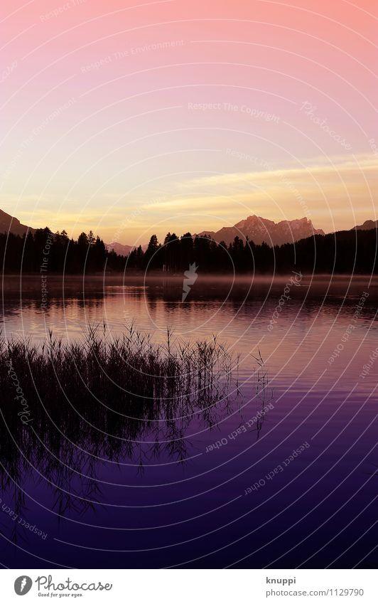 Lenzerheide Umwelt Natur Landschaft Pflanze Urelemente Feuer Luft Wasser Himmel Wolkenloser Himmel Horizont Sonne Sonnenaufgang Sonnenuntergang Sonnenlicht