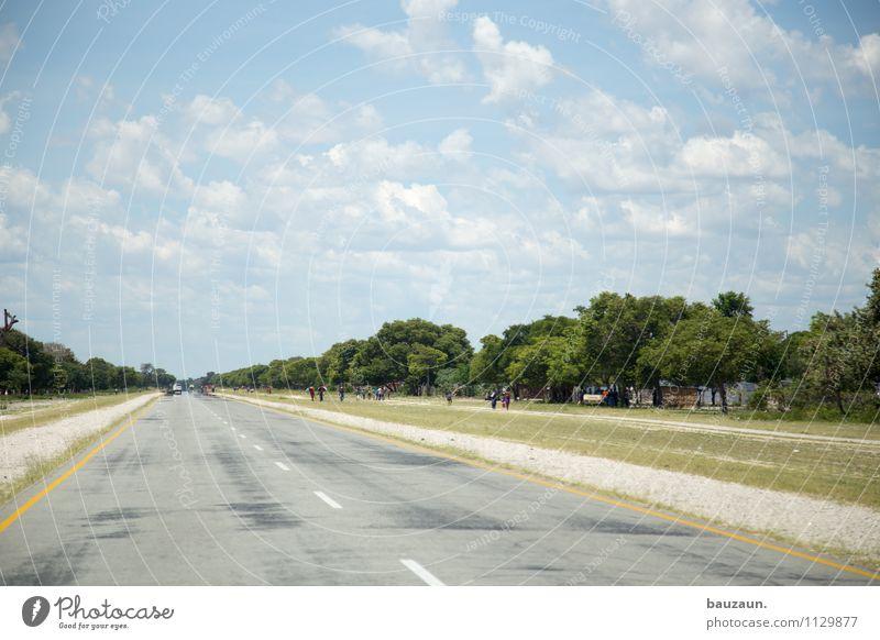 rechtsverkehr. Ferien & Urlaub & Reisen Tourismus Ausflug Ferne Mensch Umwelt Natur Landschaft Himmel Wolken Sommer Schönes Wetter Baum Gras Sträucher Caprivi
