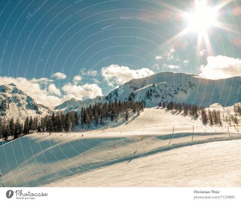 Skifahren Natur Ferien & Urlaub & Reisen Sonne Erholung Landschaft Wolken Ferne Winter Wald Berge u. Gebirge Freiheit Zufriedenheit Freizeit & Hobby Tourismus