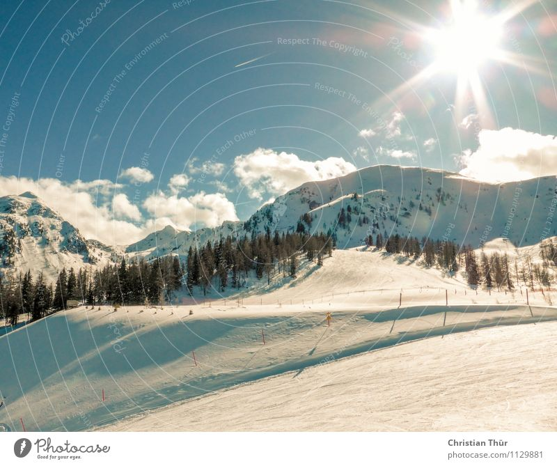 Skifahren Natur Ferien & Urlaub & Reisen Sonne Erholung Landschaft Wolken Ferne Winter Wald Berge u. Gebirge Freiheit Zufriedenheit Freizeit & Hobby Tourismus Ausflug Lebensfreude