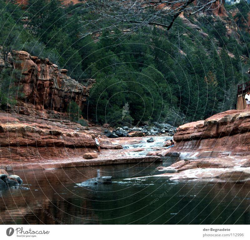 Naturbad Wasser Baum rot Freude Ferien & Urlaub & Reisen Erholung dunkel Berge u. Gebirge Freizeit & Hobby Felsen Schwimmen & Baden Fluss USA Schwimmbad Tanne