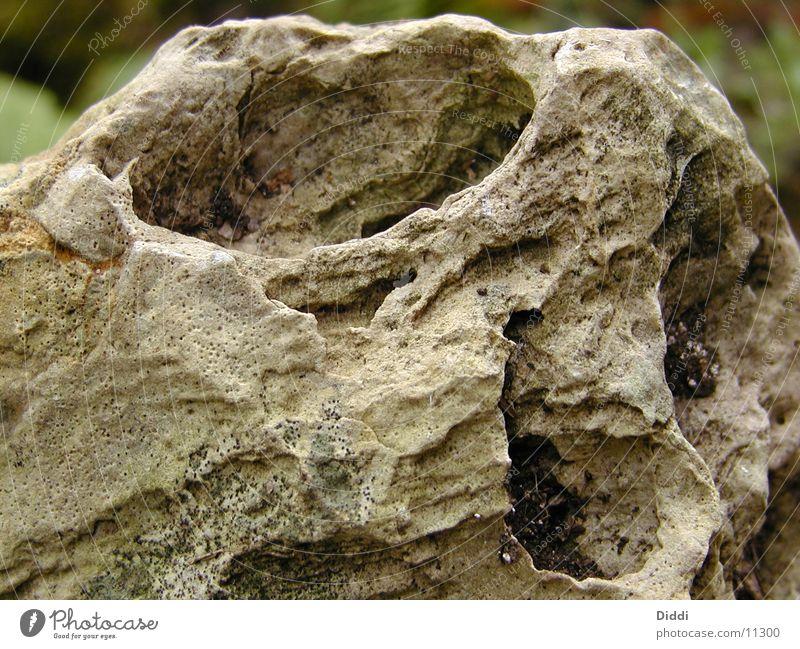 auge des steins Stein Felsen