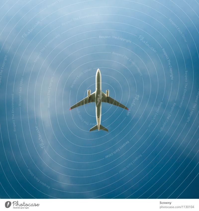 Up and away Himmel Ferien & Urlaub & Reisen blau Sommer Wolken Ferne Freiheit fliegen oben Luft Tourismus Luftverkehr Verkehr hoch Geschwindigkeit Flugzeug