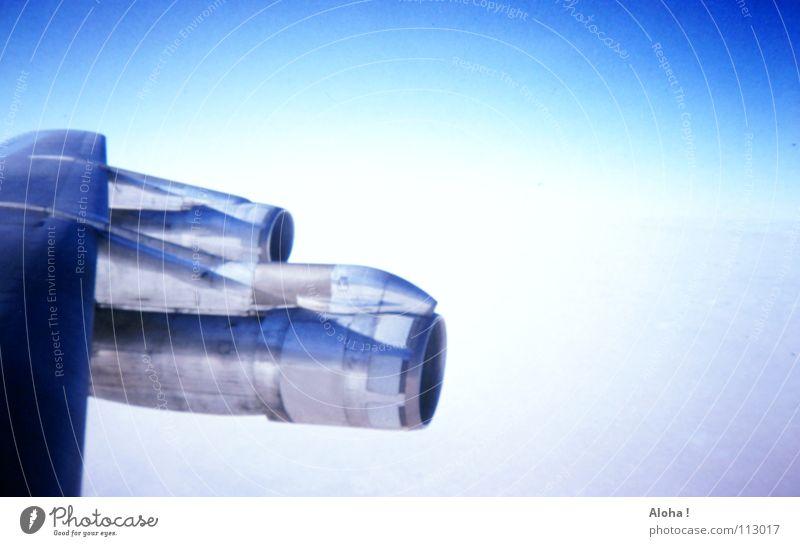 Even First Class - Fasten Your Seatbelt Himmel blau Ferien & Urlaub & Reisen Wolken Luft Graffiti Vogel Flugzeug Beginn Luftverkehr Technik & Technologie