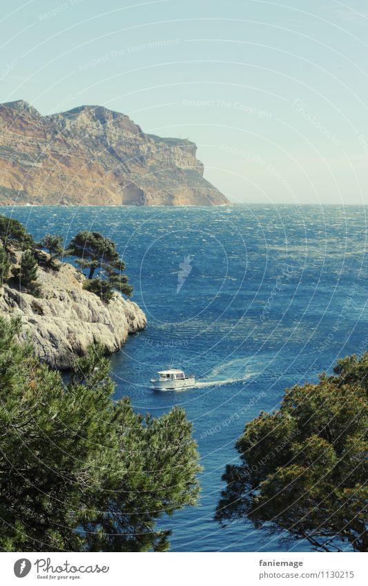 Calanques de Cassis Sommerurlaub Meer Umwelt Natur Urelemente Wasser Himmel Wolkenloser Himmel Schönes Wetter Baum Felsen Berge u. Gebirge Küste Bucht
