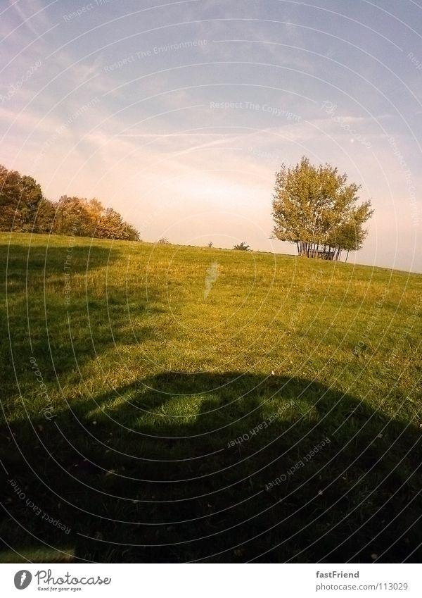 Sonntagsausflug im Batmobil Himmel Baum Sommer Ferien & Urlaub & Reisen Wiese Gras PKW Park Ausflug KFZ Hügel Autofahren Fahrzeug unterwegs