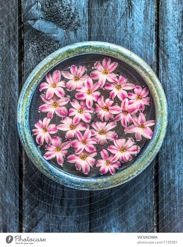 Blaue Schüssel mit rosa Blüten und Wasser elegant Stil Design schön Körperpflege Maniküre Kosmetik Parfum Gesundheit Behandlung Alternativmedizin Wellness