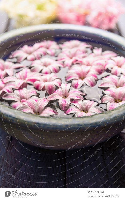 Schale mit Wasser und rosa Blüten Lifestyle Stil Design Wellness Erholung Duft Spa Massage Natur Pflanze Blume Garten aromatisch Zen blue Schalen & Schüsseln