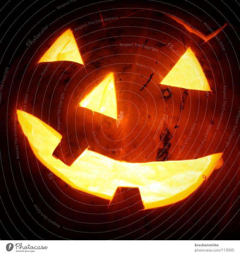 Zahnausfall und Parodontose Gesicht Auge Herbst Mund Beleuchtung Feste & Feiern orange Angst Nase gefährlich Kerze USA Vergänglichkeit gruselig Aktion Tradition