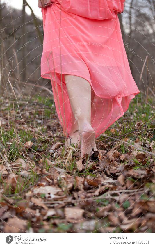 barfuß Lifestyle Stil Freude Freizeit & Hobby Mensch feminin Junge Frau Jugendliche Erwachsene Leben Beine Fuß 1 18-30 Jahre Natur Landschaft Pflanze Herbst