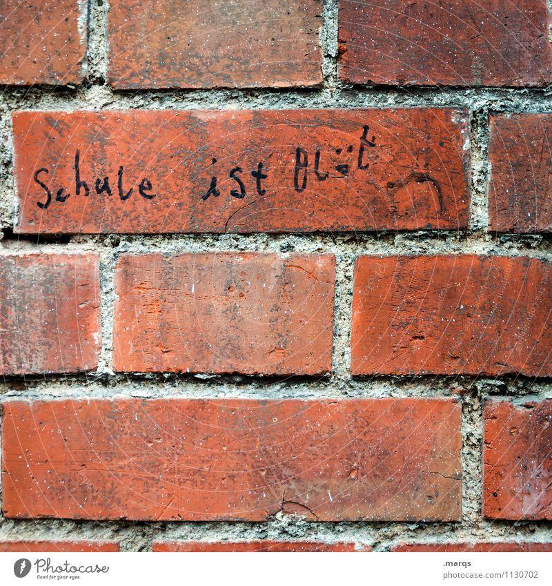 Another Brick in the wall Bildung Schule Mauer Wand Schriftzeichen Rechtschreibung Redewendung authentisch lustig Gefühle Beratung Kommunizieren Farbfoto