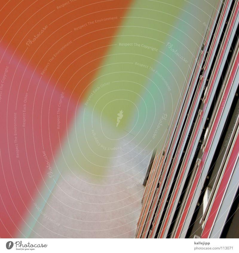 plattenverschiebung Pflanze Blume Haus Farbe Fenster Wand Architektur Lampe Beleuchtung Raum rosa leer Ecke Häusliches Leben Bauernhof Aussicht