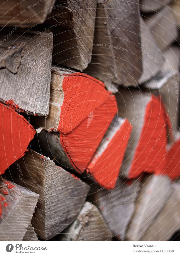 Brennwert rot Winter Wärme Holz grau braun Wetter leuchten Ordnung Energie verrückt Frost Stapel Heizung Vorrat Brennholz