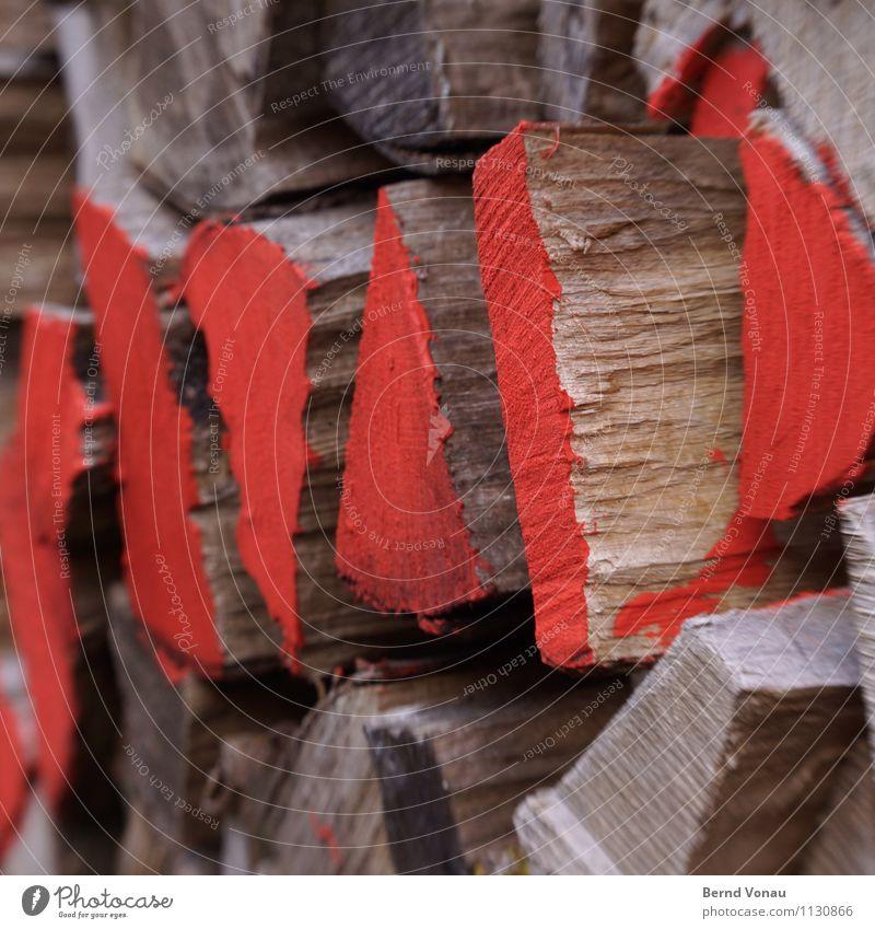 roter bereich Natur Baum braun grau Brennholz Brennstoff Holz Stapel Vorrat kennzeichnen verwittert Heizperiode Feuer Maserung teilen Farbe Lack Farbfoto