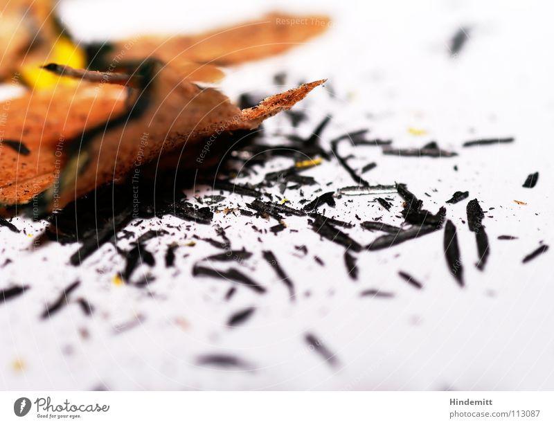 Spitzerdreck IV Bleistift Schreibstift Graphit Holz Anspitzer Missgeschick dreckig weiß schwarz grau Splitter Bruchstück Bildung Makroaufnahme Nahaufnahme pen