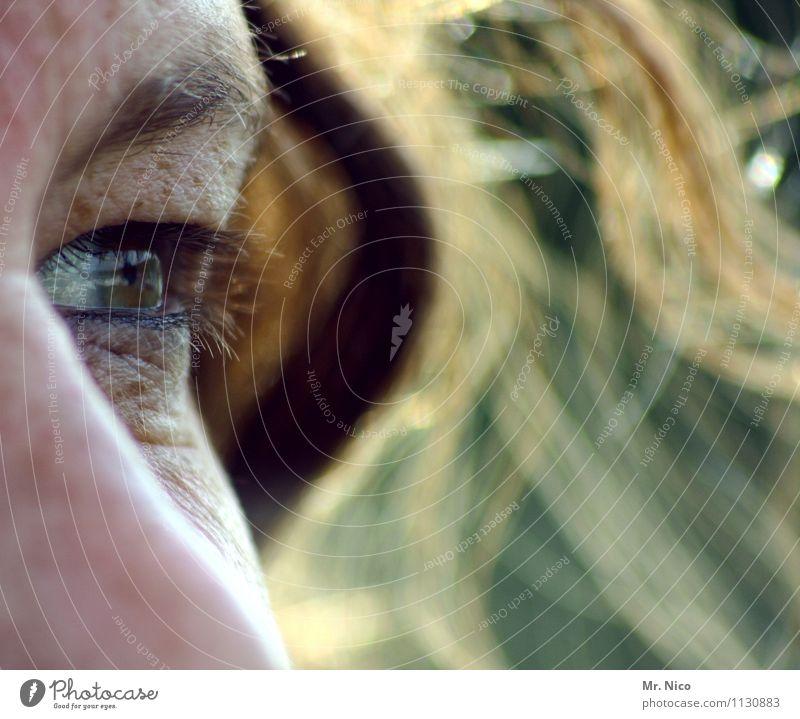 blickfang Haut feminin Frau Erwachsene Gesicht Auge Haare & Frisuren Locken beobachten authentisch außergewöhnlich einzigartig Augenbraue Sommersprossen