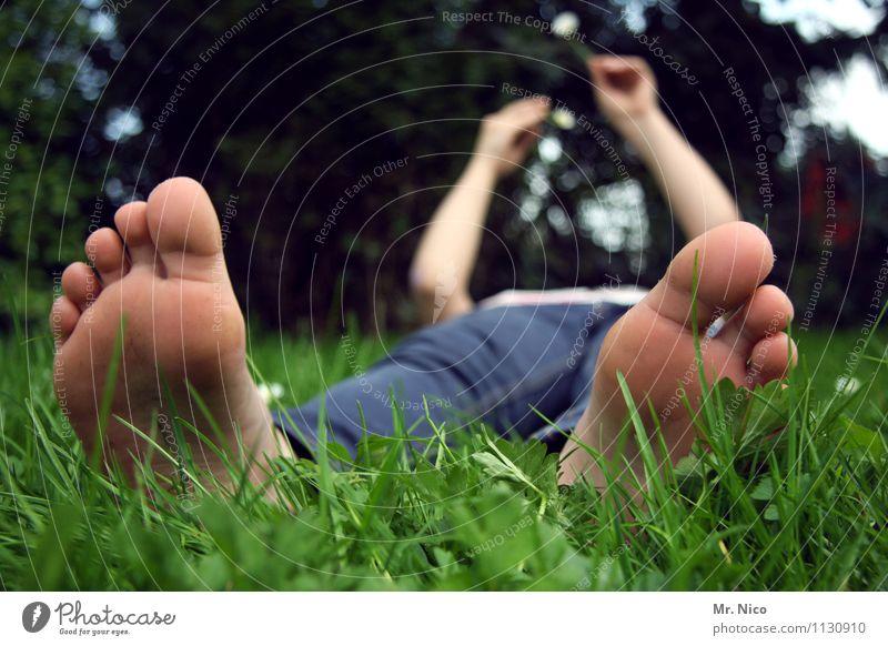 barbs'sch Erholung ruhig feminin Fuß Umwelt Natur Frühling Sommer Pflanze Wiese Jeanshose liegen Frühlingsgefühle bequem Barfuß Zehen Müdigkeit Garten