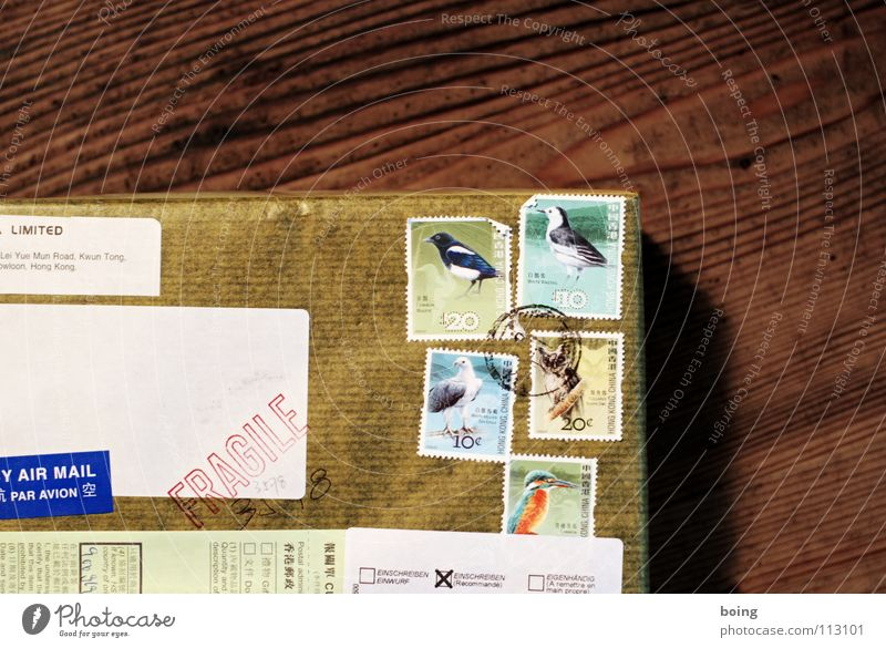 Der Seeadler hats gebracht Geschenk Paket Güterverkehr & Logistik Brief Briefmarke Vogel Luftpost Schachtel Packpapier Eichelhäher Post Absender Adressat
