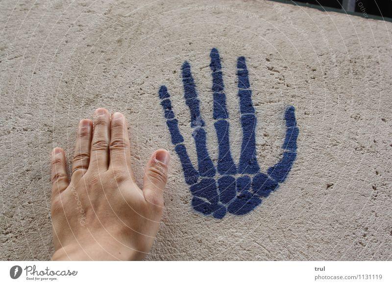 dead or alive? Hand Leben Wand Graffiti Mauer verrückt Finger berühren nah Gegenteil Skelett