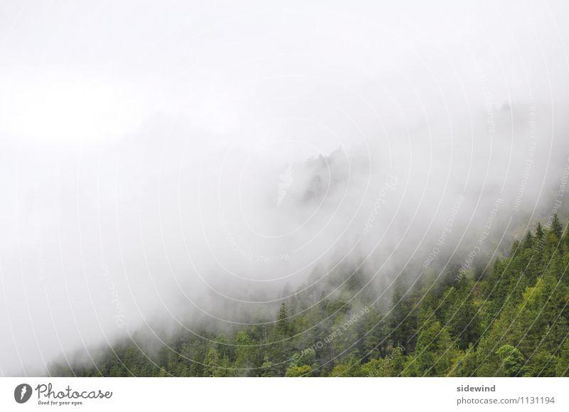 Wetterumschwung Himmel Natur Ferien & Urlaub & Reisen Landschaft ruhig Wolken Wald kalt Berge u. Gebirge Umwelt Freiheit gehen träumen Regen Freizeit & Hobby