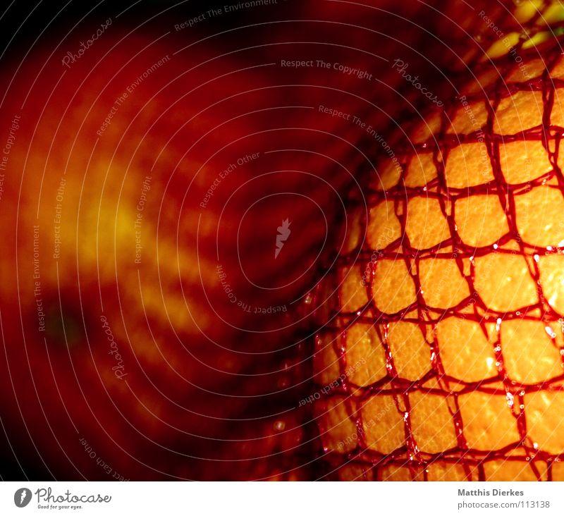 Orangen rot gelb Frucht frisch Ernährung Netz genießen Gemüse Brust lecker Handel Markt Mahlzeit Vitamin saftig