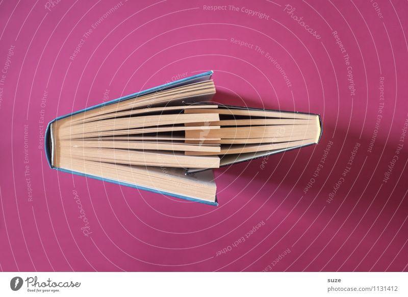 Bücherliebe Liebe Stil Zeit Paar rosa Lifestyle Zusammensein Design paarweise Kreativität Buch Kommunizieren einfach Idee Studium lernen