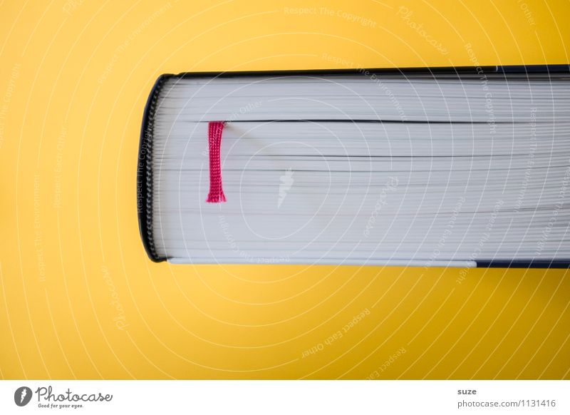 Sach- und Fachbuch gelb Stil Zeit Lifestyle Schule Design Beginn Kreativität Buch einfach Idee Studium lernen Kultur Zeichen Neugier