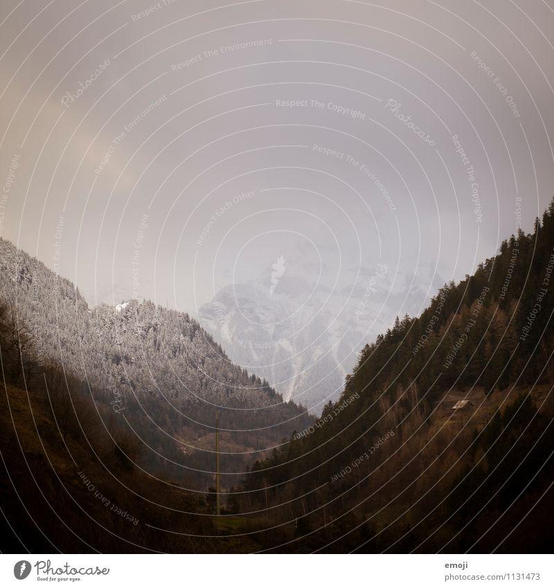 CH Natur Landschaft dunkel Umwelt Berge u. Gebirge Herbst natürlich Nebel Alpen Schweiz