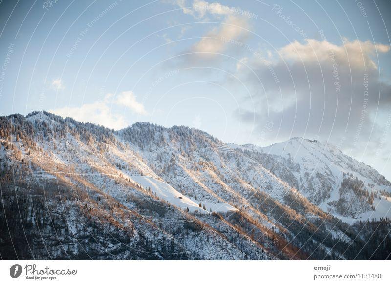 letztes Licht Umwelt Natur Landschaft Winter Schönes Wetter Schnee Alpen Berge u. Gebirge natürlich blau Abenddämmerung Farbfoto Außenaufnahme Menschenleer