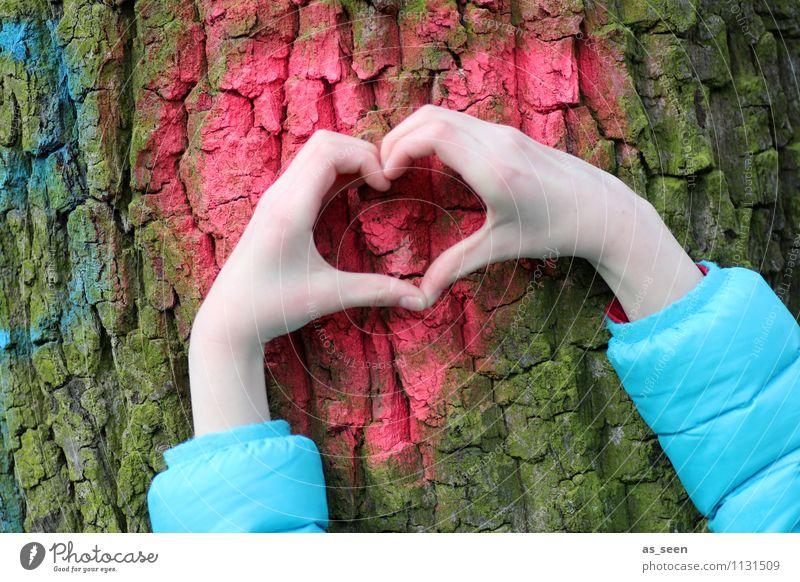 Mein Freund, der Baum Hand Finger 1 Mensch 8-13 Jahre Kind Kindheit Umwelt Natur Pflanze Baumrinde Baumstamm Jacke Herz authentisch außergewöhnlich blau braun