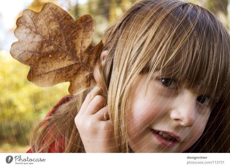 Elfefant Blatt Herbst Herbstlaub Eiche Eichenblatt Kind Mädchen Spielen verkleiden Elefant Verschmitzt Ohr Freude Blick leave leaves fallen autumn oak child ear