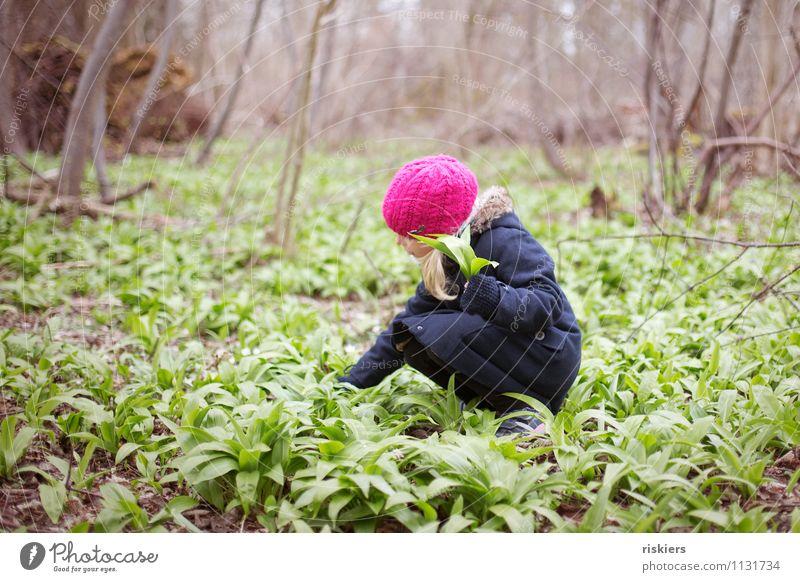 heut gibt's Bärlauchsüppchen iii Mensch Kind Natur Pflanze Erholung ruhig Mädchen Wald Umwelt Frühling feminin natürlich Gesundheit Zufriedenheit frisch