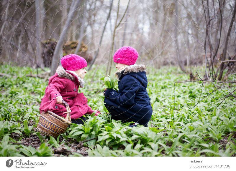 heut gibt's Bärlauchsüppchen Mensch Kind Natur Pflanze Freude Mädchen Wald Umwelt Frühling feminin natürlich Zufriedenheit frisch Kindheit Fröhlichkeit Lächeln