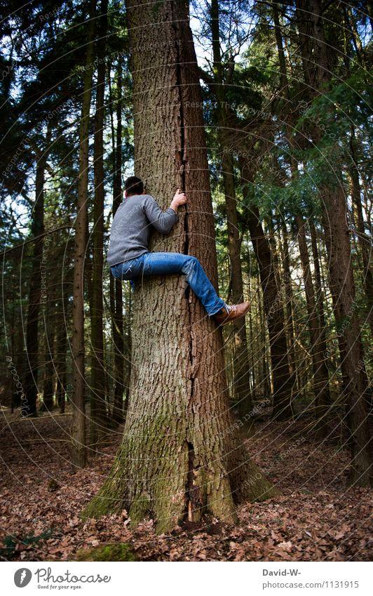 doch höher als gedacht Mensch Natur Jugendliche Baum Junger Mann Wald Leben Sport Gesundheit außergewöhnlich maskulin elegant Kraft hoch Schönes Wetter