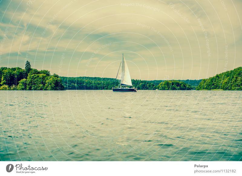 Segelboot auf einem See Freude schön Erholung Ferien & Urlaub & Reisen Kreuzfahrt Sommer Meer Wellen Sport Natur Landschaft Wolken Baum Wald Küste Fluss Verkehr