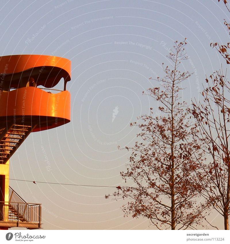 den vogel abschiessen! Hochsitz Aussicht Tourist Raum Warnfarbe Stahl schwindelfrei Fenster Blick Himmel Sightseeing Ferien & Urlaub & Reisen Fotografieren