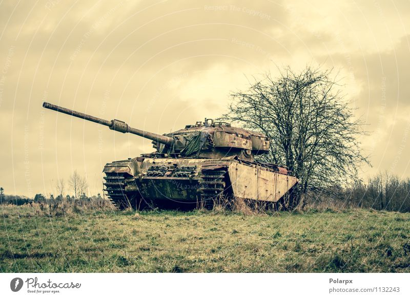 Tank auf einem Feld Camping Motor Natur Landschaft Herbst Baum Gras Wald Verkehr alt historisch retro grün Krieg Bosnien Serbien Tarnung fallen Pistole Militär