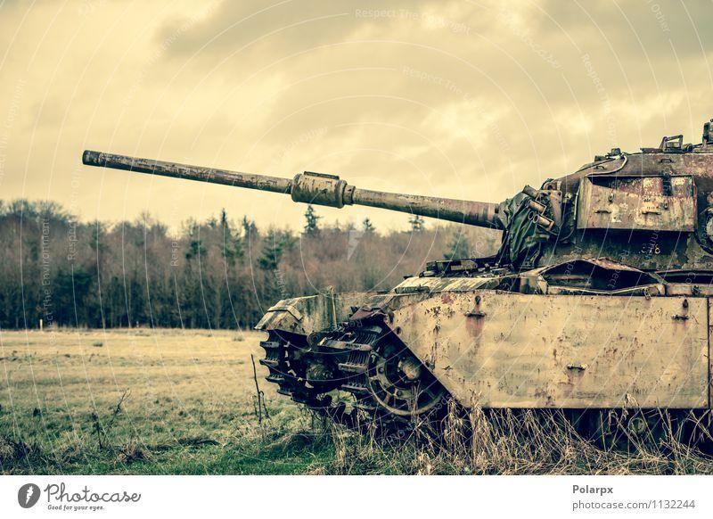 Pistole auf einem Tank Camping Motor Natur Landschaft Herbst Baum Gras Wald Verkehr alt historisch retro grün Krieg Bosnien Serbien Tarnung fallen Feld Militär