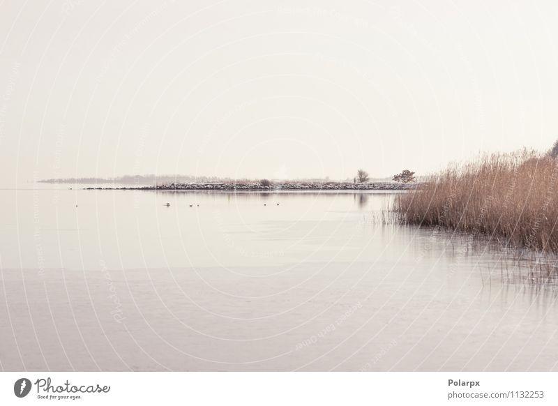 Idyllische Seenlandschaft schön ruhig Sonne Meer Winter Natur Landschaft Himmel Wolken Horizont Herbst Nebel Blatt Küste Fluss Stein natürlich Farbe Frieden