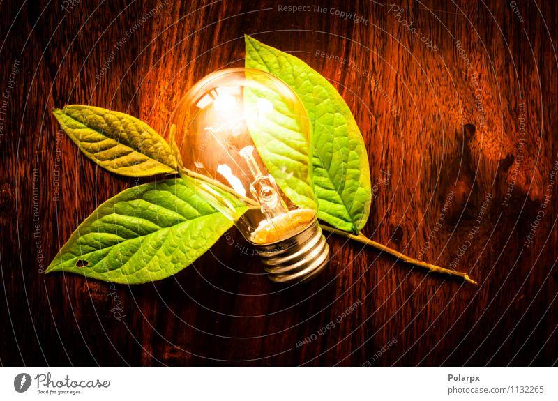 Glühbirne und grünes Blatt sparen Lampe Tisch Technik & Technologie Umwelt Natur Pflanze Baum Wachstum dunkel Freundlichkeit hell natürlich weiß Energie Idee