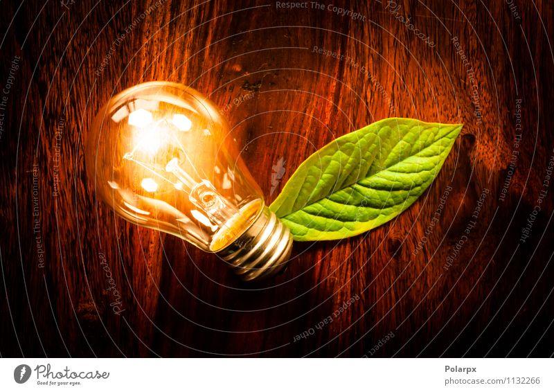Öko-Glühbirne mit grünem Blatt sparen Lampe Tisch Technik & Technologie Umwelt Natur Pflanze Baum Wachstum dunkel Freundlichkeit hell natürlich weiß Energie